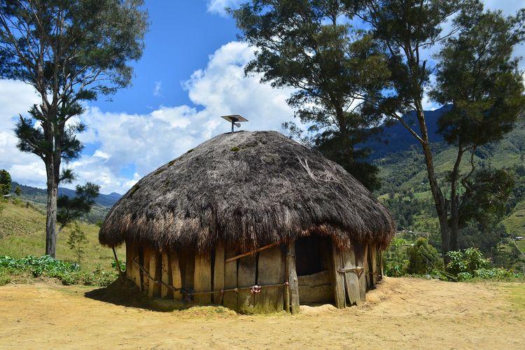Rumah honai di Papua DOK. Shutterstock/inru17