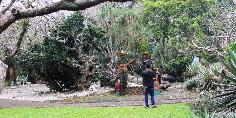 Salah satu spot berfoto atau selfie pertama di Kebun Raya Bogor yaitu taman Mexiko. Bebatuan dan tanaman kaktus yang khas membuat pemandangannya se otentik negara asalnya.