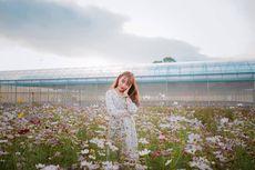 5 Wisata Instagramable di Tasikmalaya, Pas untuk Foto-foto