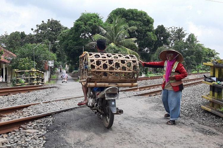 Nenek Kasturah saat mengatur arus lalu lintas pengendara yang melintas di perlintasan tanpa palang pintu KA di Desa Kampil, Wiradesa, Kabupaten Pekalongan Jawa Tengah.