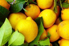 7 Benda di Rumah yang Bisa Dibersihkan dengan Lemon