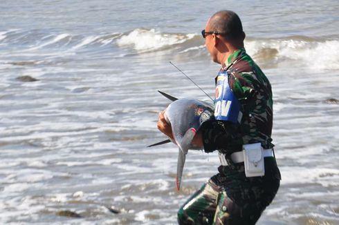 Cerita Personel TNI Tulungagung Selamatkan Lumba-lumba Terdampar