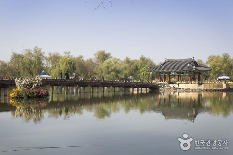 Tempat wisata di Korea Selatan bernama Gungnamji Pond di Seodong Park, Buyeo, Chungcheongnam (dok. Visit Korea   https://english.visitkorea.or.kr/).