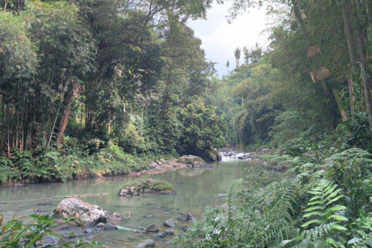 Aliran Sungai Ciujung tempat tewasnya siswa SMP Bhudaya 3 Jakarta di Kawasan Wisata Adat Baduy, Kampung Gajeboh, Desa Kanekes, Kecamatan Leuwidamar, Kabupaten Lebak, Senin (28/10/2019).