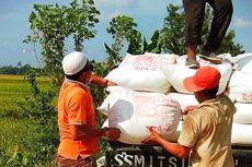 6 Bulan Pendemi di Indonesia, Penyerapan Produk Pertanian Jadi Persoalan
