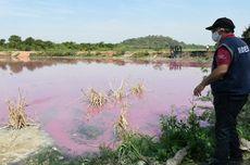 Polusi Limbah Bikin Air di Laguna Paraguay Berwarna Ungu, Kok Bisa?