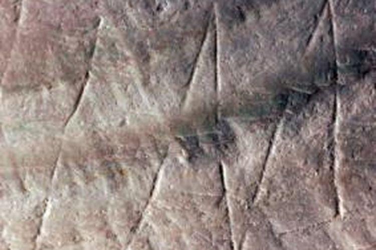 Torehan pada cangkang Pseudodon vondembuschianus trinilensis berusia 500.000 tahun, dinyatakan sebagai torehan tertua di dunia.