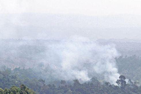 Kabut Asap di Aceh Barat, Penderita ISPA Bertambah Jadi 367 Orang