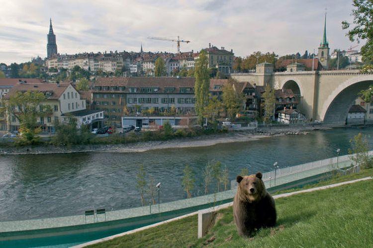 Bear Park, Kota Bern