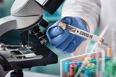Erick Thohir: Bio Farma Bisa Ekspor Vaksin Covid-19 untuk Membantu Negara Lain