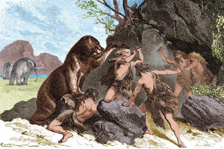 Ilustrasi ini dibuat tahun 1870, menggambarkan manusia purba menggunakan tongkat kayu dan kapak batu untuk menangkis serangan seekor beruang gua besar. Beruang gua (Ursus spelaeus) adalah spesies beruang yang hidup di Eropa selama Pleistocene dan punah di awal Maksimum Glasial Terakhir, sekitar 27.500 tahun lalu. Di belakangnya ada Mammoth.