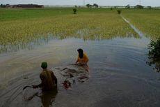 Banjir Demak, 3 Pengungsi Meninggal dan 28 Dirawat di Rumah Sakit