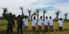 Tidak Ada Paceklik di Sulawesi Utara