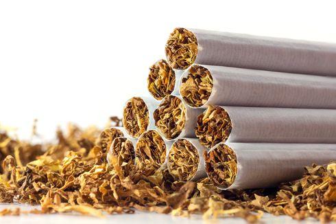 Serikat Buruh dan Petani Tembakau Desak Jokowi Tak Menaikkan Cukai Rokok
