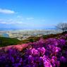 Destinasi Wellness di Korea Selatan untuk Pulihkan Fisik dan Mental, Apa Itu?