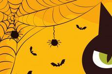 Kenali Apa itu Fobia, Gejala, Penyebab, Cara Mengatasinya