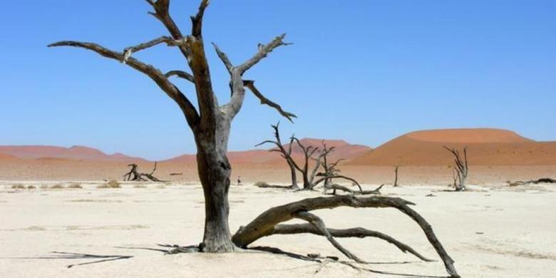 Ilustrasi dampak perubahan iklim.