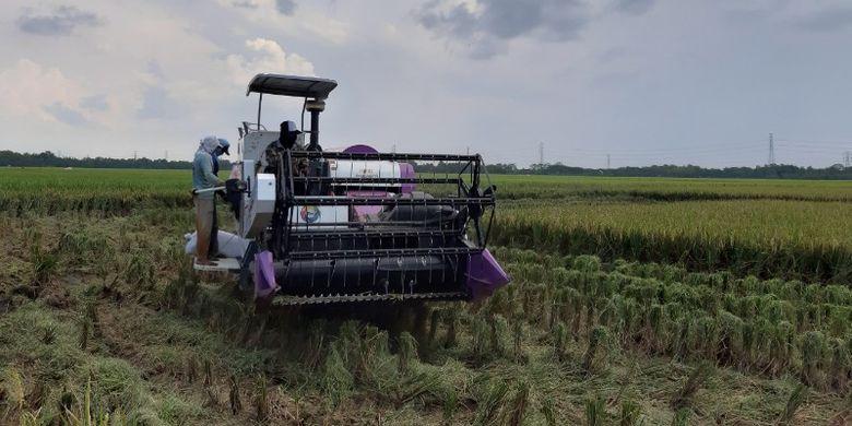 Petani Indramayu sedang menggunakan alsintan bantuan Kementan, Kamis (4/4/2019). Total pemerintah sudah memberikan bantuan lebih dari 600.000 alsintan kepada petani Indonesia dalam 4,5 tahun terakhir.