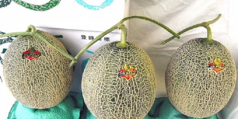 Melon Yubari, Jepang