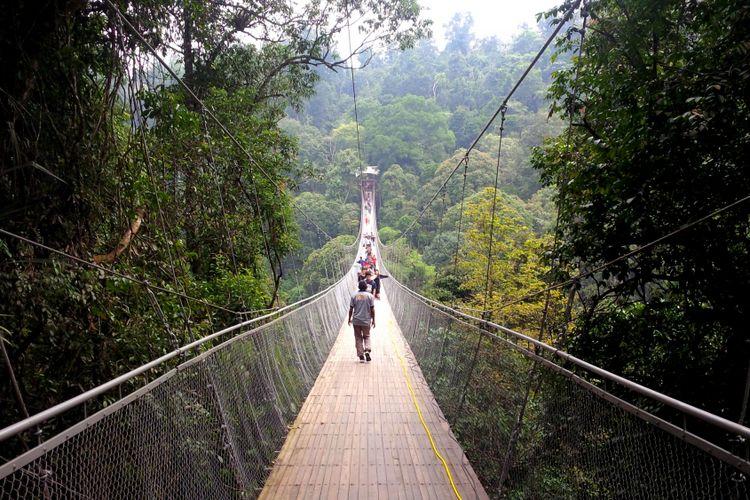 Ada Jembatan Gantung Wisata Alam Situgunung Di Sukabumi