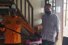 Selama November, BPBD Banjarmasin 9 Kali Evakuasi Ular dari Rumah Warga