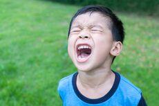 Pahami, Begini Cara Anak Ungkapkan Emosi Berdasarkan Usia