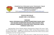 Hasil CPNS 2019 Pemprov NTT dan Pemprov NTB Sudah Diumumkan, Ini Link-nya!