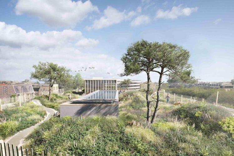 Atap bangunan juga akan dilengkapi dengan rerumputan khusus dengan jenis ammophlia arenaria yang biasanya hanya bisa tumbuh di atas area itu.