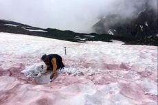 Gletser Darah di Pegunungan Alpen Bisa Jadi Penanda Perubahan Iklim