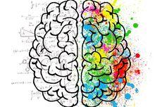 Tanpa Suplemen, Ini  Cara Tingkatkan Fungsi Otak