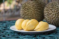 [POPULER FOOD] Mitos dan Fakta Makan Durian   Cara Simpan Pisang