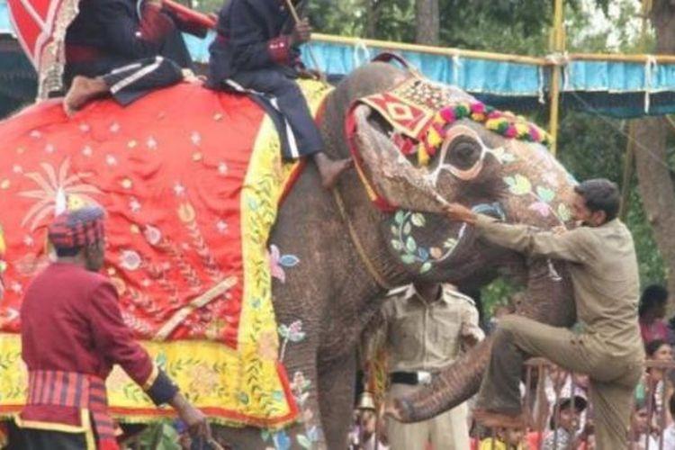 Indria si gajah semasa hidupnya.