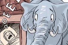 Gajah Stop Rusak Rumah Warga Setelah Dengar Tangis Bayi