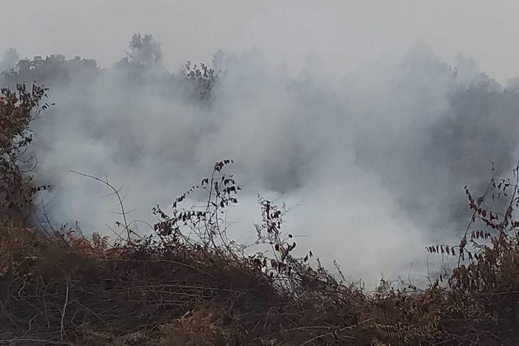 Kebakaran hutan dan lahan di Kabupaten Kepulauan Meranti, Riau, Rabu (6/3/2019).