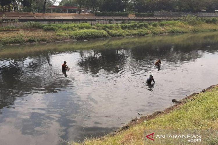 Pencari cacing bekerja di Kanal Banjir Timur, Jakarta Timur, Jumat (19/7/2019).