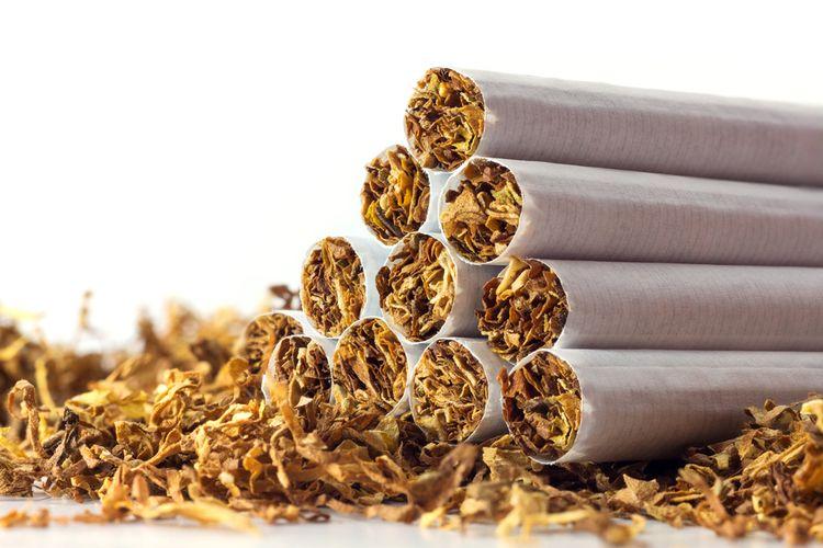Ilustrasi rokok tembakau, konsumsi tembakau.