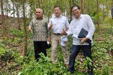 Menteri PPN Harap Peletakan Batu Pertama Pembangunan Ibu Kota Baru Dapat Dilaksanakan Saat Ramadhan Ini