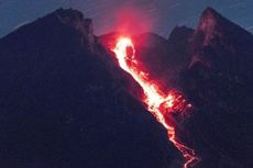 Gunung Merapi Semburkan Awan Panas Letusan dengan Tinggi Kolom 3 Km