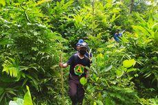 Tak Kunjung Ditemukan, Pencarian Orang Hilang di Hutan Banyumas Dihentikan
