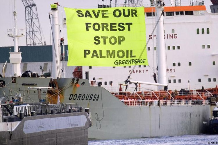 Greenpeace has tried to stop the destruction of forests for years