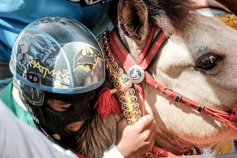 Pacuan Kuda di Bima Bakal Jadi Acara Nasional, Ini Persiapannya