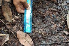 Warga Musi Rawas Temukan Jejak Kaki Diduga Harimau, BKSDA: Itu Tapir