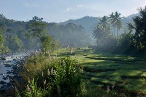 70 Persen Daerah Indonesia Bakal Jadi Perkotaan