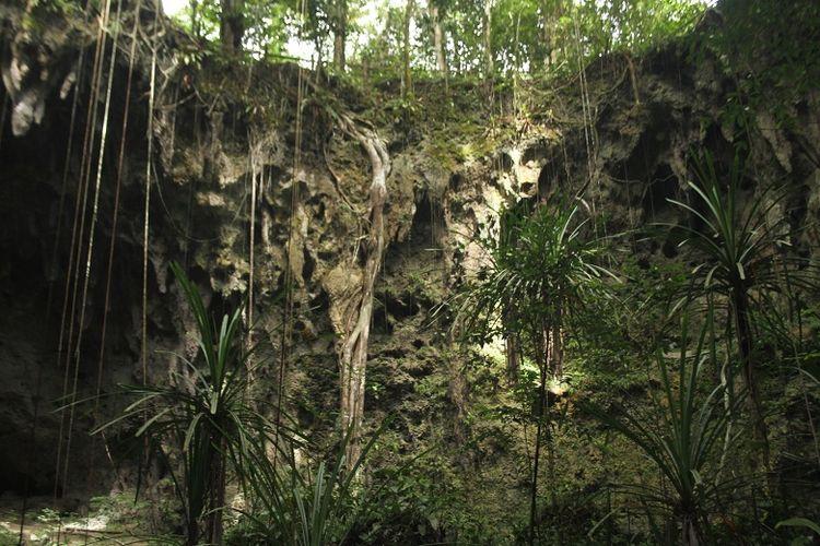 Pemandangan di dalam obyek wisata Goa Jepang di Biak Numfor, Papua Barat saat dikunjungi tim Ekspedisi Bumi Cenderawasih Mapala UI. Ekspedisi Bumi Cenderawasih bertujuan untuk menyingkap potensi wisata di Papua Barat.