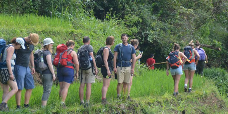 Turis Belgia yang mengambil paket wisata Ekologi Mbeling sedang berjalan di pematang sawah Mbeling dalam trekking yang mengelilingi kawasan hutan Mbeling, Desa Gurung Liwut, Kecamatan Borong, Manggarai Timur, Flores, NTT, Senin (14/8/2017).