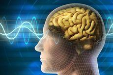 Tiga Hal Pencegah Penurunan Fungsi Otak