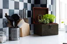 12 Tanaman Pembawa Hoki yang Cocok Diletakkan di Dapur