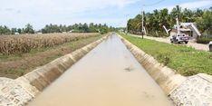 Kementan Lakukan Rehabilitasi Jaringan Irigasi Tersier di Kabupaten Pati, Begini Hasilnya