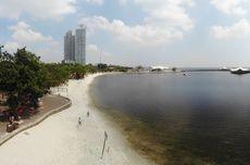 Wagub DKI: Sudah Tidak Ditemukan Kandungan Parasetamol di Teluk Jakarta