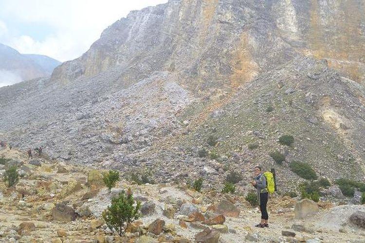 Tebing menjulang tinggi di sisi kanan ketika mulai memasuki daerah kawah Gunung Papandayan, Garut, Jawa Barat, Minggu (21/2/2016).